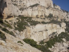 Calanques janvier 2010 041.jpg