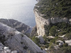 Calanques janvier 2010 071.jpg